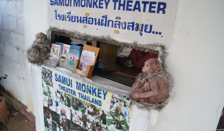Samui Monkey Theater