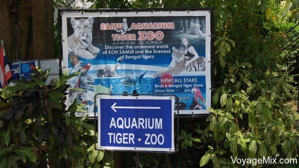 Аквариум и зоопарк с тиграми