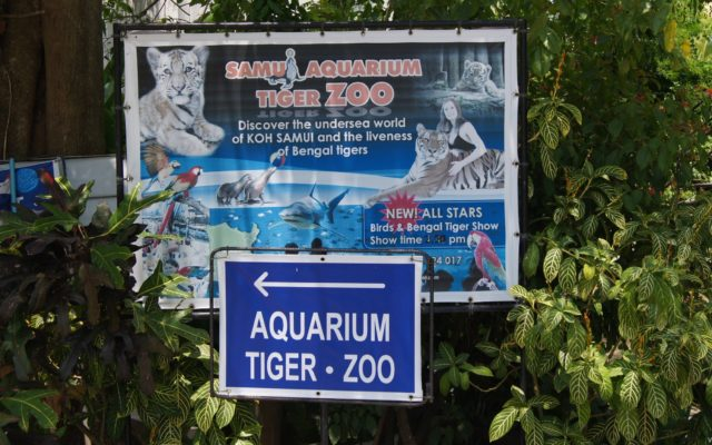 Аквариум и зоопарк с тиграми на Самуи (Samui Aquarium & Tiger Zoo)