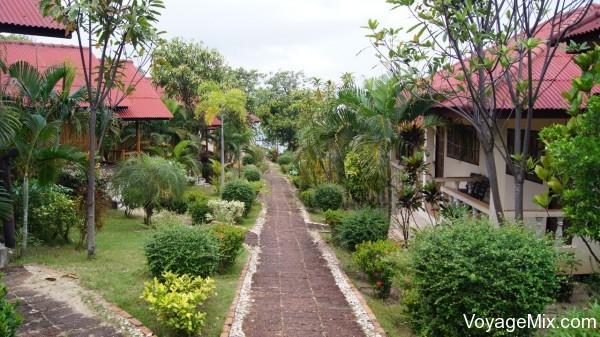 Отели Пангана