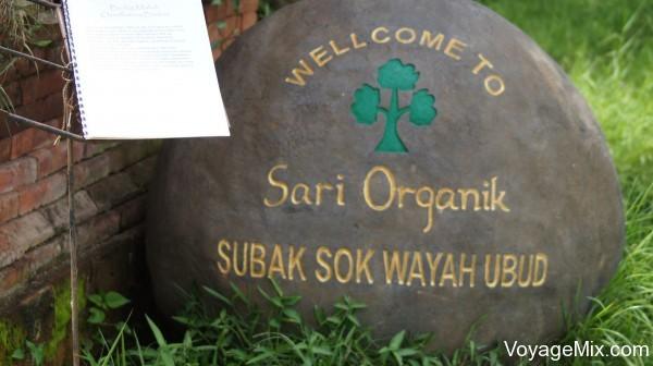 Sari Organic