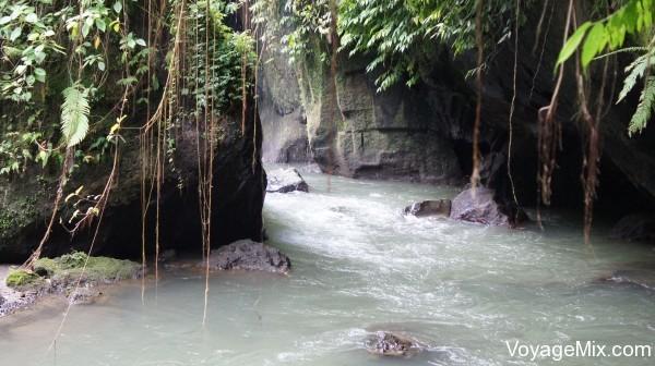 можно попасть к бурной речке и тропическому лесу