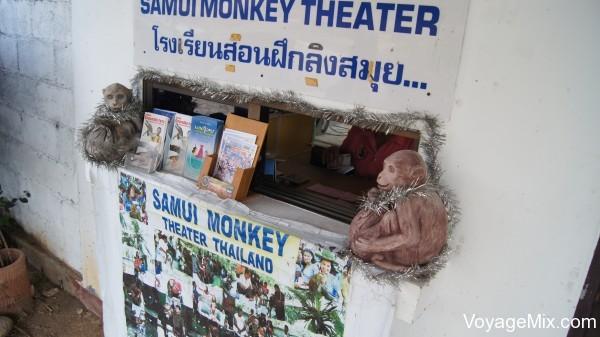 Шоу в театре обезьян на Самуи, Samui Monkey Theater
