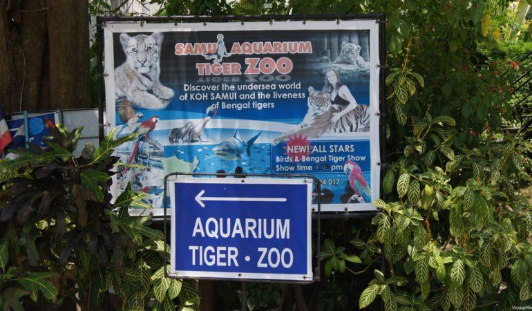 Аквариум и зоопарк с тиграми на Самуи (Samui Aquarium & Tiger Zoo)