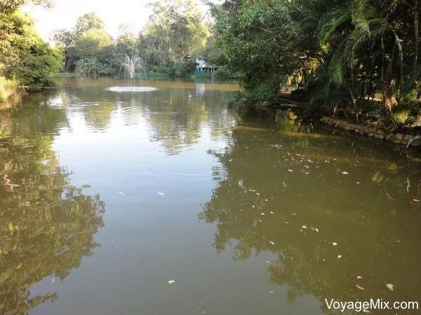 Территория тайского храма