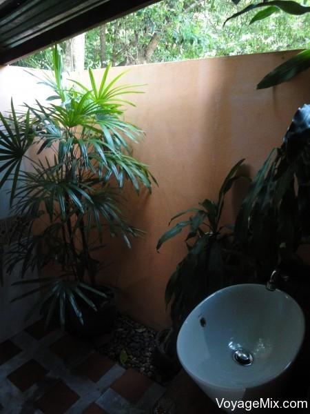 Порадовали растения в туалете