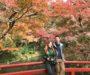 Едем в Японию на сезон момидзи